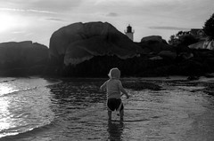 pk1288 (patrickkuhl) Tags: leica m6 leicam6 summarit summaritm 50mm f25 massachusetts filmisnotdead film analog filmphotography kodak colorplus 200iso iso200 blackandwhite monochrome beach 35mm