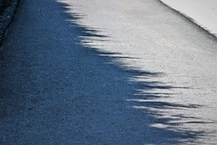 the shadow of a hedge (EllaH52) Tags: light shadow minimalist simplicity pavement sidewalk