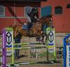 Horse jumping (frankmh) Tags: horse people rider jumping hittarp skåne sweden sport helsingborg