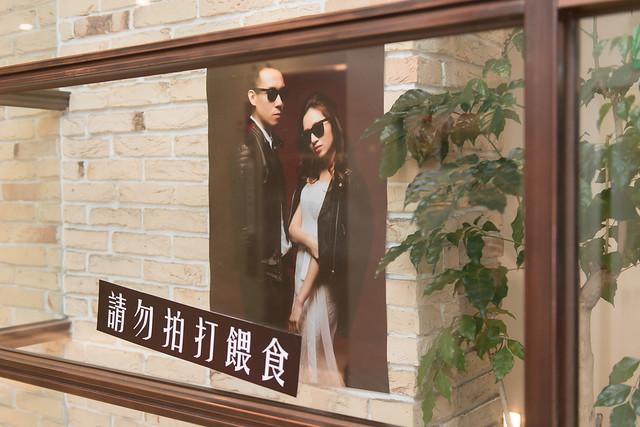 台北婚攝,大毛,婚攝,婚禮,婚禮記錄,攝影,洪大毛,洪大毛攝影,北部,trastevere