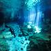 Diving the Cenotes in Yucatan, Mexico