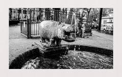 Hippopotamus (rudeskull) Tags: noiretblanc bronze statur wasser brunnen nilpferd tier diy film fp4 ilford atomal49 blackandwhite schwarzweis bw analog nikonf5 friedrichshain ostberlin berlin blanconegro bianconero