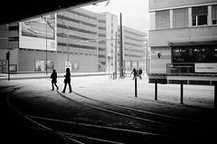 sudden snow (gato-gato-gato) Tags: 35mm contax contaxt2 iso400 ilford ls600 noritsu noritsuls600 schweiz strasse street streetphotographer streetphotography streettogs suisse svizzera switzerland t2 zueri zuerich zurigo analog analogphotography believeinfilm film filmisnotdead filmphotography flickr gatogatogato gatogatogatoch homedeveloped pointandshoot streetphoto streetpic tobiasgaulkech wwwgatogatogatoch zürich ch black white schwarz weiss bw blanco negro monochrom monochrome blanc noir strase onthestreets mensch person human pedestrian fussgänger fusgänger passant sviss zwitserland isviçre zurich autofocus