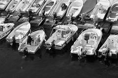 (Mikko Luntiala) Tags: 2018 bw blackandwhite boating boats d600 france ihmiset june kesä kesäkuu mustavalkoinen marseille marseilles mediterraneansea men meri miehet mikkoluntiala nikond600 people ranska sailing sea summer tamronsp70200mmf28divcusdg2 veneet veneily välimeri