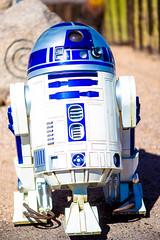 Hey R2 (Thomas Hawk) Tags: america arizona cavecreek hornytoad r2d2 starwars thehornytoad usa unitedstates unitedstatesofamerica desert restaurant us fav10
