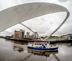 Down by the Tyne. . . (CWhatPhotos) Tags: cwhatphotos tyne millennium bridge boat tyneridge gateshead olympus penf pen f micro four thirds camera photographs photograph pics pictures pic picture image images foto fotos photography artistic that have which contain newcastle upon river bythe north east england uk span crossing blue water host city day skies buildings clouds reflection reflections