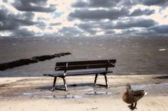 Norddeich (elag.1) Tags: wasser meer wolken natur licht sand jahreszeiten sommer bearbeitung