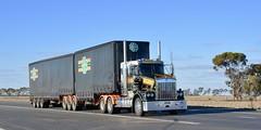 KITCO (quarterdeck888) Tags: trucks truckies transport australianroadtransport roadtransport lorry primemover bigrig overtheroad class8 heavyvehicle highway road truckphotos nikon d7100 movingtrucks jerilderietrucks jerilderietruckphotos quarterdeck frosty expressfreight generalfreight logistics overnightfreight highwayphotos semitrailer semis semi flickr flickrphotos bdouble kitco townley itsleeper t659 kenworth kenwortht659