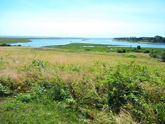 DSCN5652, We visit the Fort Hill area, July 2018 (a59rambler) Tags: capecod massachusetts