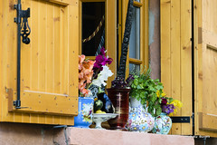 Mostrando la diversidad - Mostrando la diversità - Showing diversity (Álvarez Bonilla) Tags: ventana finestra window alféizar ripiano ledge azul azzurro blue marrón marrone brown vasija pots vessel nave fioriera maceta flower flores fiore francia france