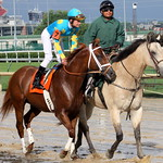 Churchill Downs Race: Jockey Calvin Borel thumbnail
