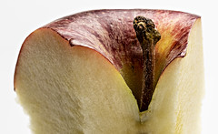 curvy core (MyArtistSoul) Tags: apple core details stem curves red yellow mottled skin warmwhite flesh macro closeup wide 8187 macromondaysrefreshment