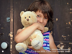 2016-06a Facing the Family 2018 (03) (Matt Hahnewald) Tags: matthahnewaldphotography facingtheworld head face eyes childreneyes expression story hair toy teddybear bothhands parentalconsent concept humanity lifestyle love enjoyment upbringing education optimism family countryside homestead brussels ontario canada canadian ontarian individual oneperson female child childhood girl photo nikond610 primelens 50mm 4x3 horizontal street portrait halflength closeup seveneighthsview outdoor color summer posing authentic smilingmouthclosed positive beautiful happy peeking natural nikkorafs50mmf18g lookingcamera clarity catchlights