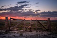 beyond the horizon (Rafael Zenon Wagner) Tags: zaun wiese fence grassland sundown sonnenuntergang new south wales australien australia wolken clouds nikon d810 58mm gras himmel feld dämmerung landschaft