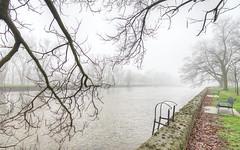 royal city park, guelph , canada (DeZ - photolores) Tags: royalcitypark guelphcanada water trees fog mist hdr nikon nikond610 nikkor nikkor1424mmf28 urban dez