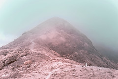 Meditate (_hojim) Tags: hongkong nature meditation trees hill mountain sky mist infrared ir rest alone minimal abstract tone art trail lantau