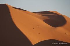 Lala Merzouga (nina.polareuth) Tags: lalamerzouga merzouga sahara sand sanddune maroc morocco ergchebbi