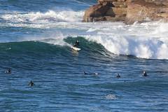 2018.07.15.08.36.59-Board barrel-001 (www.davidmolloyphotography.com) Tags: bodysurf bodysurfing bodysurfer bronte australia newsouthwales sydney surf surfing wave