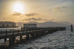 Municipal Pier (yarnim) Tags: municipalpier aquaticpark aquaticparkcove aquaticparkpier sanfrancisco goldengate sunset landscape ocean bridge dramaticsky sky clouds sun sony a7m3 a7iii ilce7m3 carlzeiss sonnar55mm 55mm sel55f18za