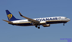 EI-FRY LMML 18-07-2018 (Burmarrad (Mark) Camenzuli Thank you for the 13.3) Tags: airline ryanair aircraft boeing 7378as registration eifry cn 44750 lmml 18072018