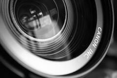 (Franck.Robinet) Tags: mono monochrome bnw black white lens hmm mm photographygear noiretblanc zoom canon macromondays macro