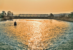 . (Rambonp:loves all creatures of this universe.) Tags: haridwar sunrise sun sunrays blue red yellow green water reflectiontrees sky clouds nature landscape wallpaper paradise silhouette mountains morning india atthecrackofdawn canoeing sportsman sports rowing