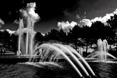Fountains / Fonteinen (jo.misere) Tags: keukenhof lisse bw zw holland nederland