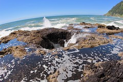 There's a hole in tidepool (daveynin) Tags: tidepools cave hole hightide tides waves water