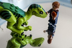 2018-06-26 Making Friends (Mary Wardell) Tags: lego minifig dinosaur toys reflections fun ps