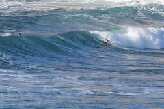 2018.07.15.08.33.44-ESBS Bronte Seq 04-002 (www.davidmolloyphotography.com) Tags: bodysurf bodysurfing bodysurfer bronte australia newsouthwales sydney surf surfing wave
