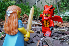 Here There Be Dragons (Gary Burke.) Tags: dragon elf maiden woman warrior legofigures minifigures toy legominifigures toys toyphotography legophotography legobricks sony a6300 mirrorless sonya6300 macro lego showdown ny newyorkcity newyork colorful klingon65 gothamist nyc garyburke citylife iloveny cityliving ilovenyc city newyorklife travel nycdetails nyctravel ilovenewyork iheartnewyork urban citystyle wanderlust traveling park nycpark alleypondpark bayside alleypond oaklandgardens queens fun summer fantasy sword fight dangerous beast mythicalcreature