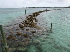 IMG_4709 (Man O' World) Tags: baha mar nassau bahamas beach turtle resort