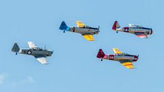 WWII_weekend-1224.jpg (gdober1) Tags: autoupload wwiiweekend worldwarii aircraft aviation airshow