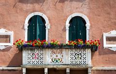 Venezia, Italy (Bela Lindtner) Tags: lindtnerbéla nikon d7100 nikond7100 nikkor 18105 nikkor18105 nikon18105 venice venezia velence olaszország italy street windows window balcony outdoor flower flowers belalindtner architecture építészet