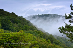 What's not to love about a Summer storm in the mountains... (Dianne Sherrill Photography) Tags: mountain storm blueridgemountains blueridgeparkway north carolina clouds trees weather climate