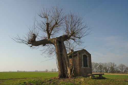 De obligate kapel