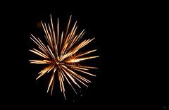 salt shaker (milomingo) Tags: outdoor night sky fireworks pyrotechnics wisconsin texture abstract black onblack multiple light dark contrast vivid gold geometry symmetry line pattern vibrant swiggle stopmotion explosion technique dimension photoart inorganic curve repeat burst white golden blackbackground