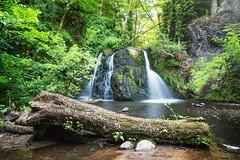 Fairy Glen Falls II (Paul C Stokes) Tags: fairy glen falls rosemarkie inverness scotland northcoast500 north coast 500 nc500 nc northcoast sony sonya7r2 a7r2 zeiss1635 zeiss 1635 sel1635z water waterfall people tree forest river rock soil grass fairyglen fairyglenfalls
