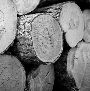 Wood.......