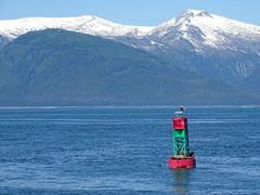 DSC03607 (jrucker94) Tags: juneau alaska cruise cruiseport eagle seal seals buoy ocean inlet red green