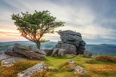 Emsworthy Rocks (Rich Walker75) Tags: dartmoor devon landscape landscapes landscapephotography landmark landmarks tree trees rocks rock tor tors sky cloud evening grass boulder boulders outdoor canon england efs1585mmisusm eos eos80d