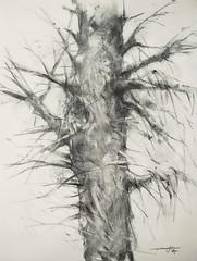 P1018370 (Gasheh) Tags: art painting drawing sketch nature tree charcoal pencil gasheh 2018