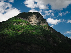 Rock face/flock of birds | P2251262 (mkreibohm) Tags: schweiz swizerland tessin ticino mountain peak alps rock face cliff stone birds flock flying sky clouds light dramatic summer green lush vegetation plants nature landscape olympus micro43 microfourthirds olympusomdem1 swiss sonogno valverzasca verzascatal alpine trees