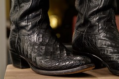 DSC02713 (CraigShipp.com Photos - Events / People / Places) Tags: lucchese custommade crocodile boots