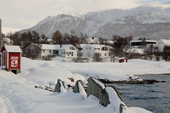 DSC_3186 (stephenholden46) Tags: tromso norway snow winter harbour arcticcircle
