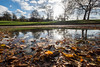 Greenwich Park reflections (Spannarama) Tags: park greenwichpark blueskies sunshine greenwich puddle water reflections trees leaves fallenleaves autumnleaves lowviewpoint ratseyeview clouds london uk