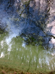 Pale Forest and Heavy Skies (andressolo) Tags: pale forest trees sky branches clouds reflection reflections reflejos reflejo river río water nature distortions distortion abstract