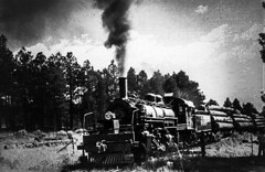 Remembering Arizona Past (Woodypug) Tags: locomotive landscape logging loc blackwhite steam seligmansub atsf train coconino county arizona