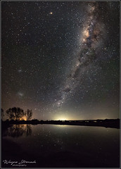 MilkyPuddle (wayne stronach) Tags: astrophotography night nightscape newzealand river trees milkyway stars
