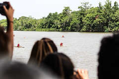 The Crowds view (_Lionel_08) Tags: people color boats pirouge canoe kayak water tree swamp race